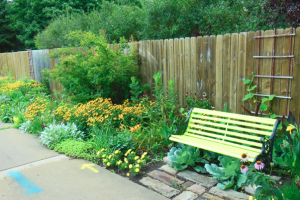 Shawna Coronado's Chicago garden